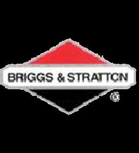 Briggs & Stratton Parts